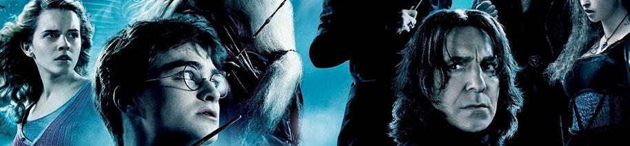 Harry Potter: Colección completa - Steelbook DVD - Chris Columbus ...